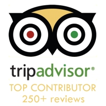 TripAdvisor Top Contributor Badge and Link